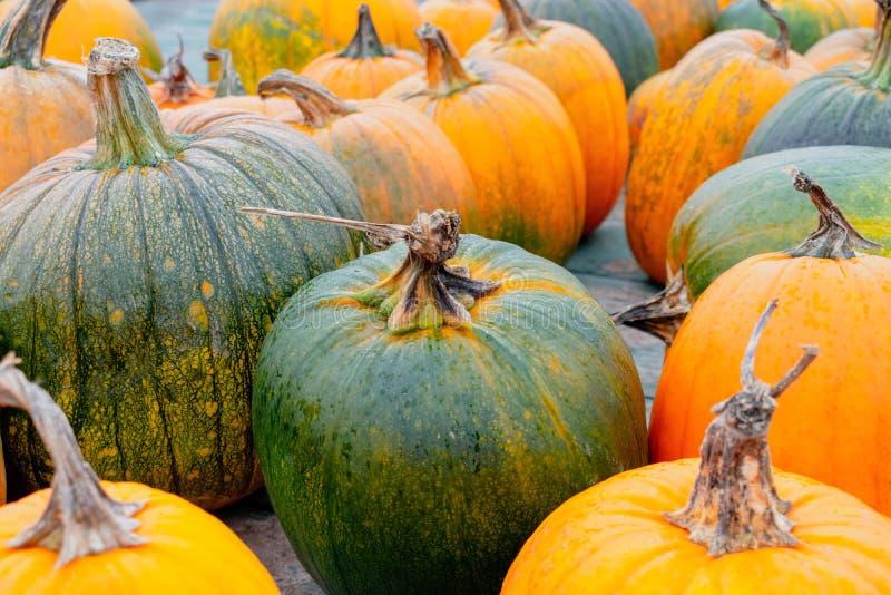 Full frame natural pumpkins. Full frame pumpkins in a variety of shades royalty free stock photo