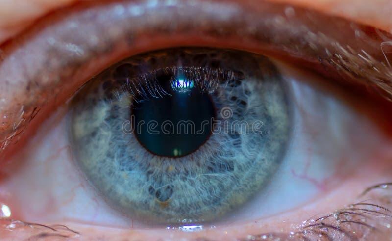 Full Frame Shot Of Human Eye. Women stock image