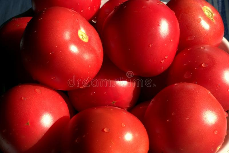 Full Frame Shot of Red Tomatoes royalty free stock image