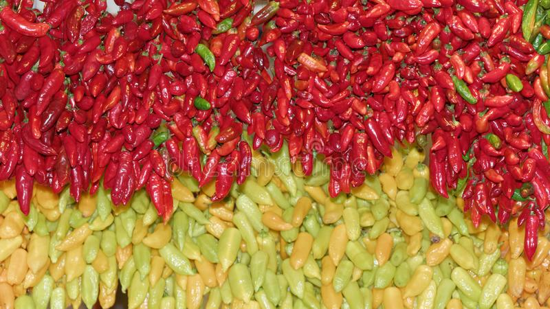 Full frame shot of red and yellow chili peppers. Full frame shot of hanging red and yellow chili peppers bunches stock photography