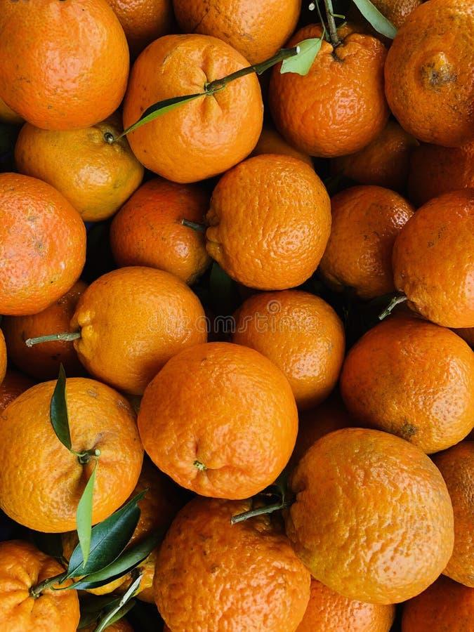 Full frame of texture, Group of Orange citrus For Sale At Market. Full frame of texture, Group of Orange For Sale At Market.Winter is the season of citrus royalty free stock photo