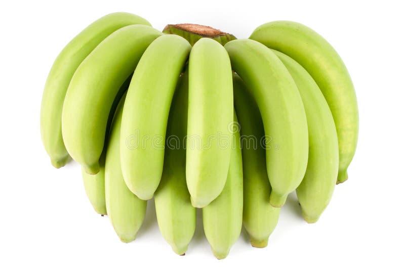 Yellow Green Banana Comp. Full Green Banana Comp isolated on white background royalty free stock photos