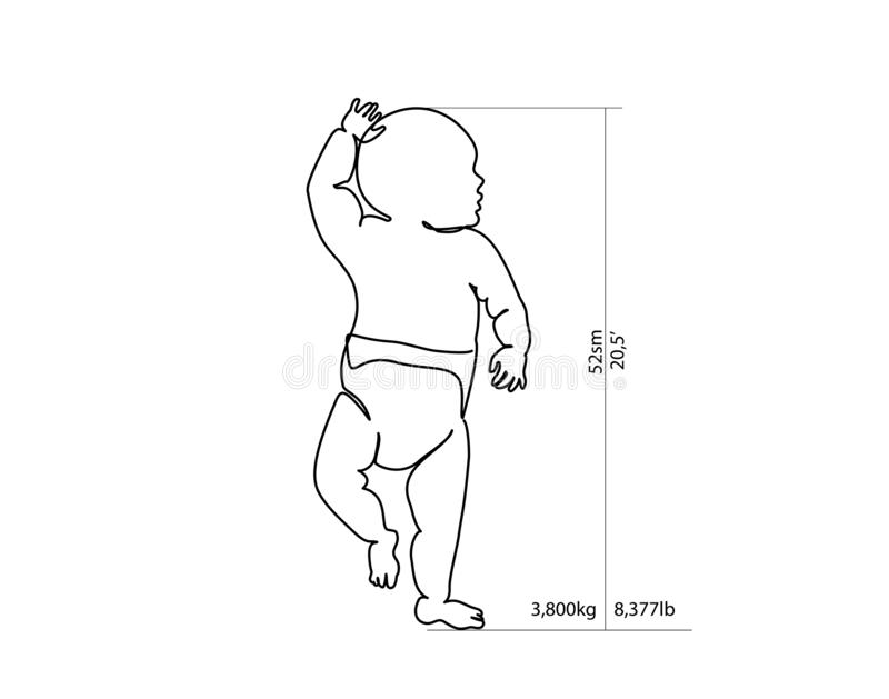 Full-growth baby for height and weight measurement stock illustration