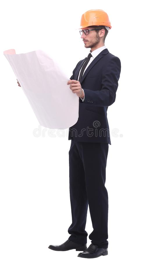 In full growth. businessman looking at sketches of a new projec. T. isolated on white background royalty free stock photo