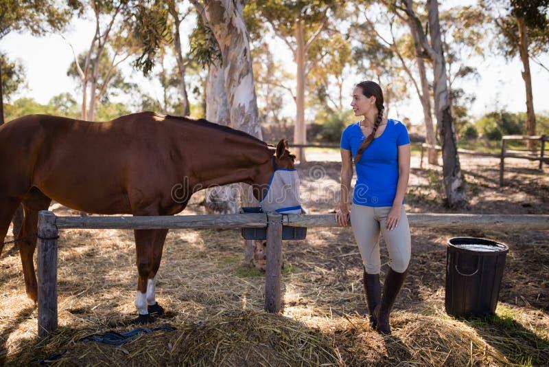 Full längd av kvinnaanseendet vid hästen royaltyfri fotografi