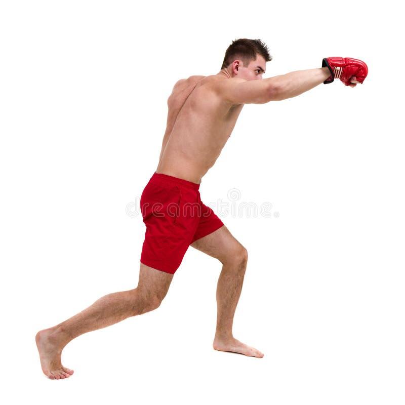Full längdstående av den unga manliga boxaren som visar någon förehavanden mot isolerad vit bakgrund arkivbild
