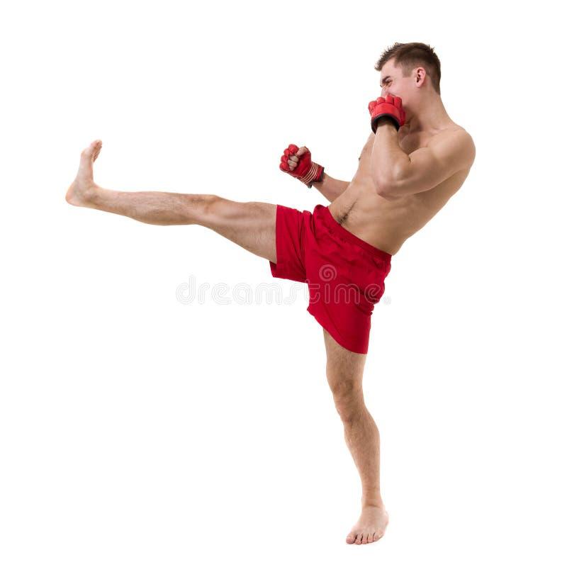 Full längdstående av den unga manliga boxaren som visar någon förehavanden mot vit bakgrund arkivbild