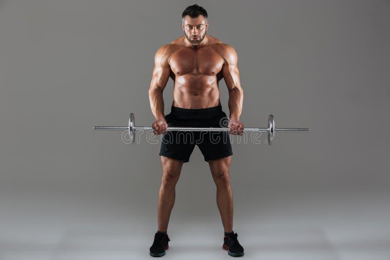 Full längdstående av en koncentrerad stark shirtless manlig kroppsbyggare arkivbild