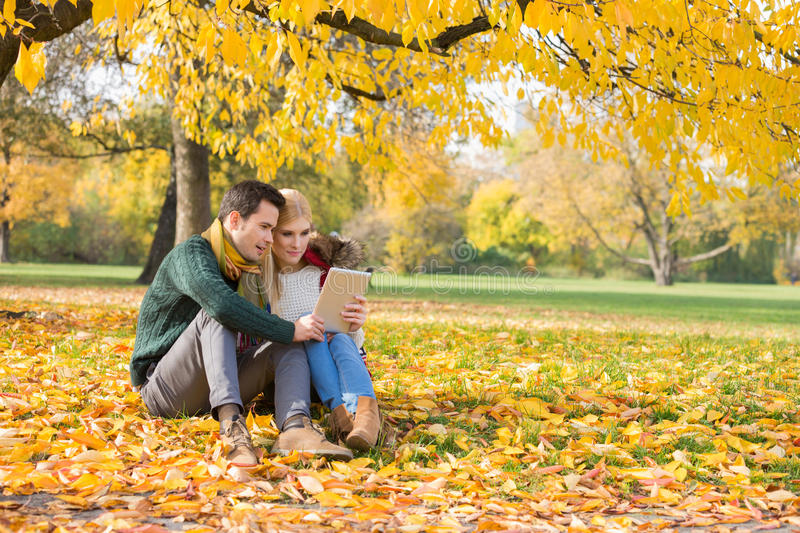 Full length of couple using tablet PC in park during autumn royalty free stock photography