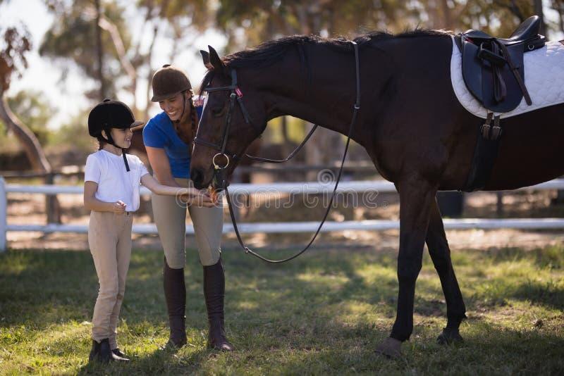 Full length of female jockey with sister feeding horse royalty free stock images