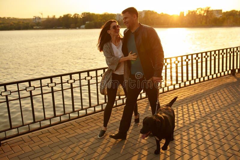 Full length of a happy couple walking dog stock image