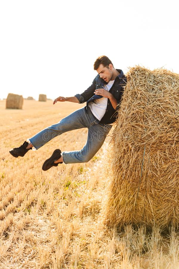 Full length photo of amusing man 30s walking through golden field, and having fun near big haystack during sunny day. Full length photo of amusing man 30s royalty free stock photos