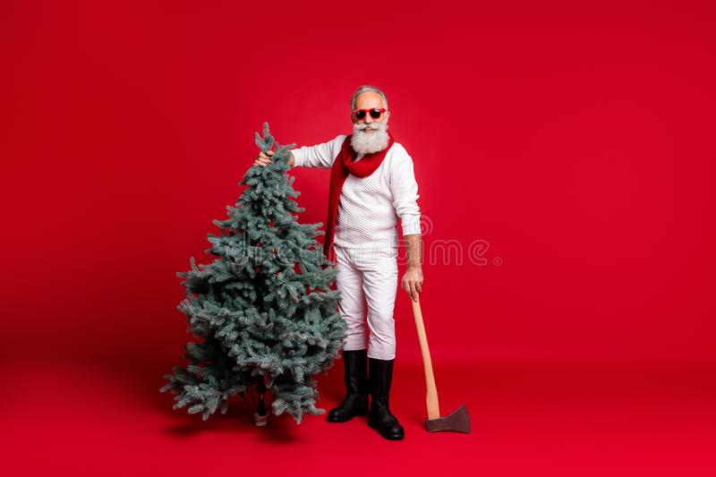 Full length photo of cheerful retired man holding fir tree having eyeglasses eyewear wearing boots white pullover pants stock photos