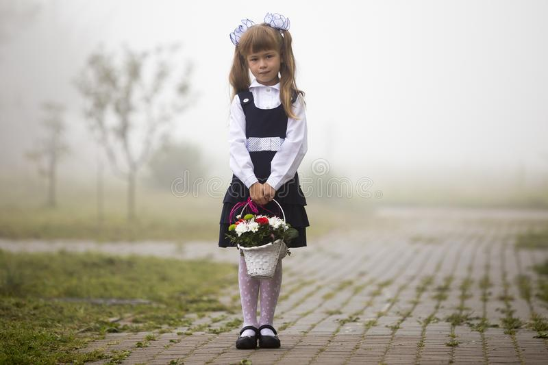 Full-length portrait of cute adorable first grader girl in school uniform and white bows with flowers basket composition standing royalty free stock images