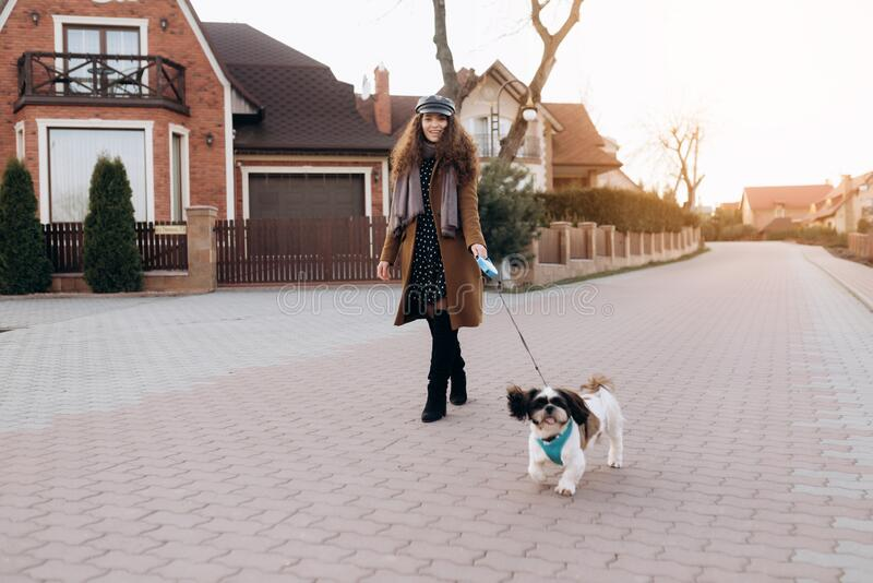 Full-length portrait of romantic young lady in summer hat walking dog. Stunning curly girl in dress posing with shi-tzu stock photo