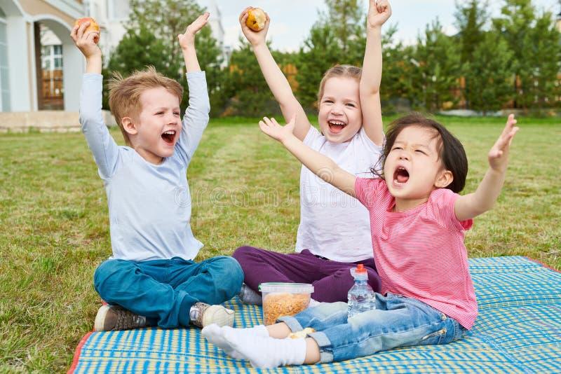 Happy Kids Enjoying Picnic on Lawn royalty free stock photos