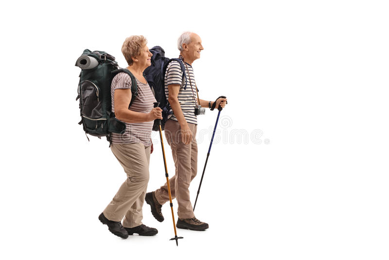 Full length profile shot of elderly hikers walking. Isolated on white background royalty free stock image