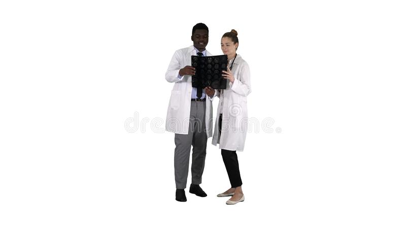 Serious nice woman doctor and afro american doctor study brain x ray on white background. Full length. Serious nice women doctor and afro american doctor study stock photos