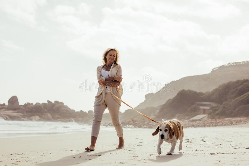 Mature woman walking her dog on the beach stock photo