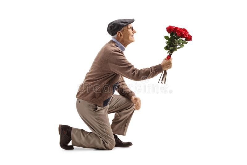 Senior man kneeling with a bouquet of roses royalty free stock photo