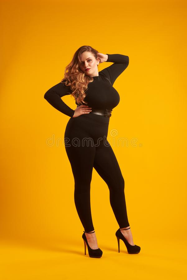Stunning plus-size girl posing at studio stock image