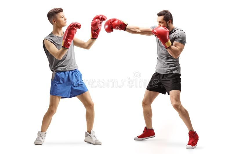 Two young men training box stock photos