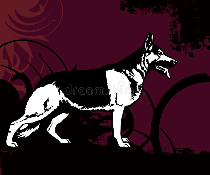 Full of life a40. German shepherd, police dog with colored swirl background royalty free illustration