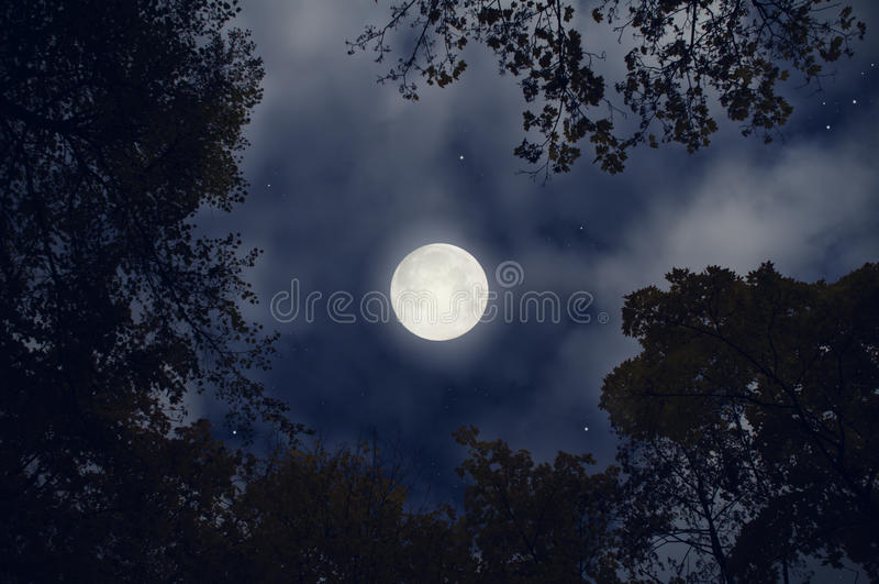full magisk moon arkivfoto