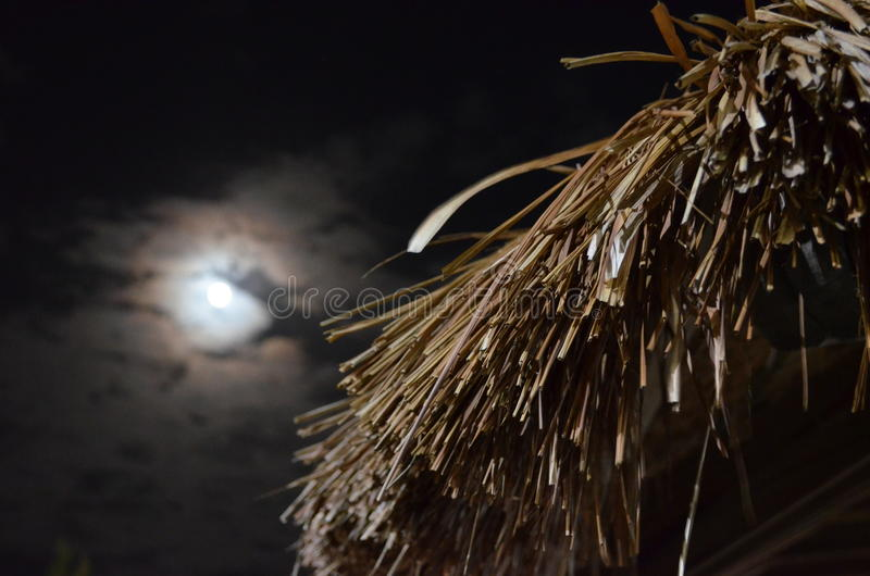 Full Mon over Thatch Roof. The full moon over a thatch roof in Caye Caulker, Belize stock images