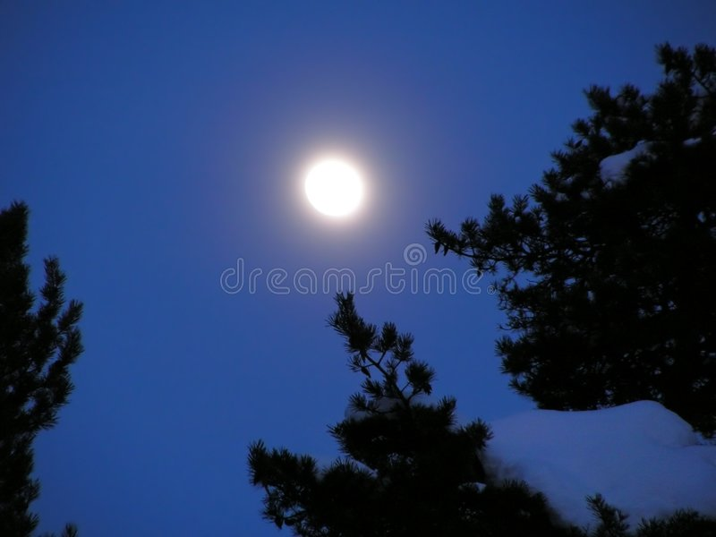 Almost full moon 1 stock photography