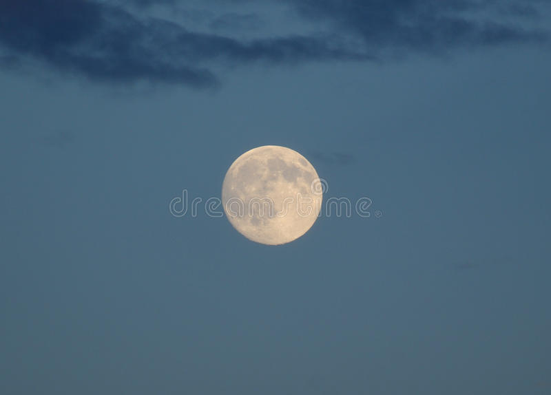 Full moon. On an evening sky royalty free stock photography