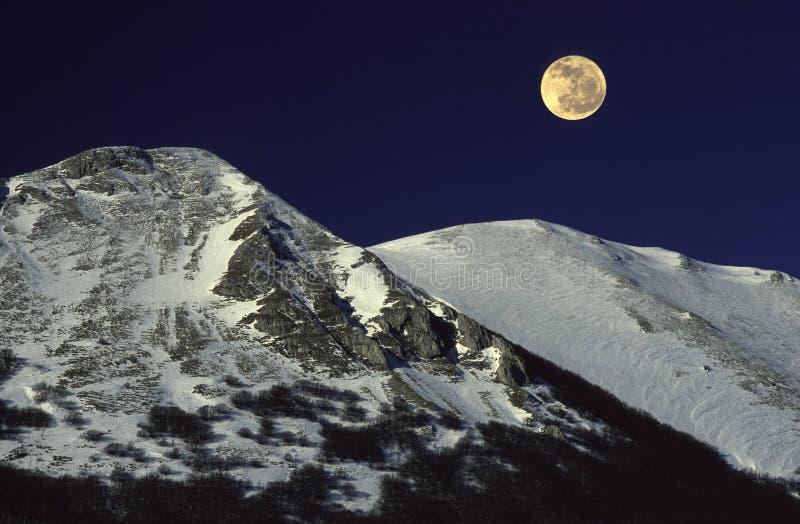 Download Full moon stock image. Image of full, rising, winter, dusk - 2611935