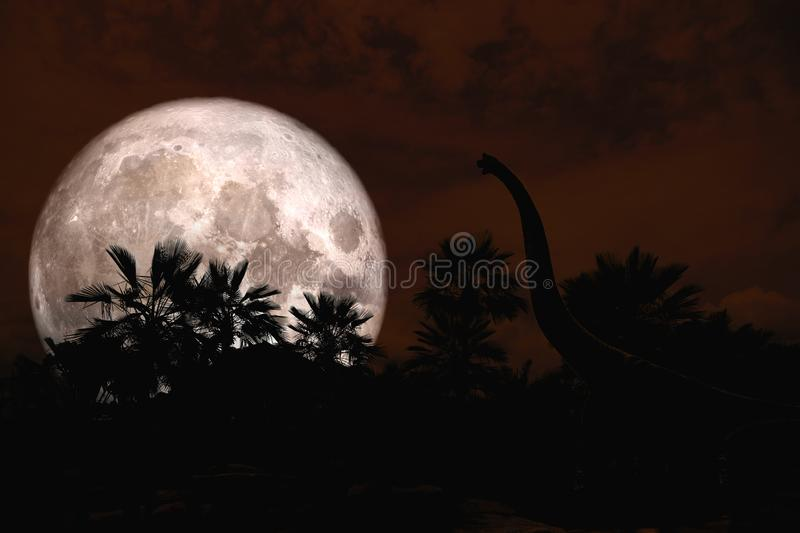 full moon back silhouette dinosaur in ancient park red night sky royalty free stock photo