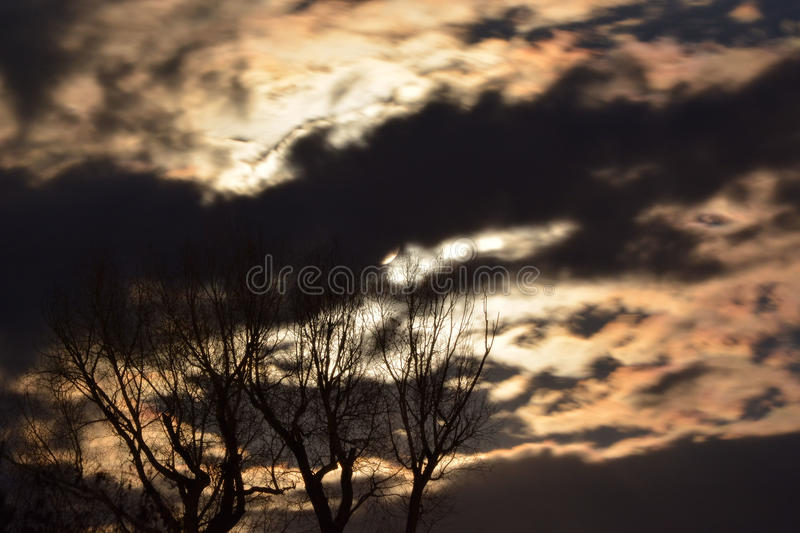 Full Moon Behind Golden Night Skies and Spooky Trees stock photo