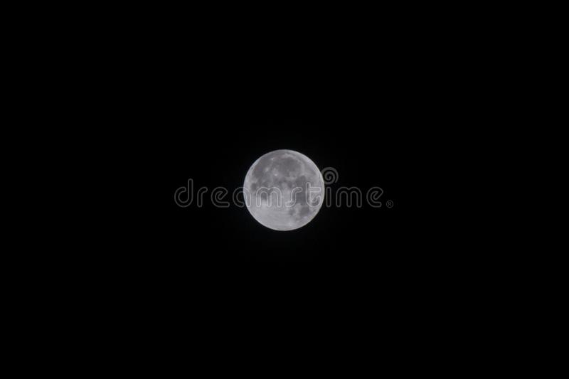The full moon is captured against a night sky. Highly detailed photo of the bright full moon in the night sky vector illustration