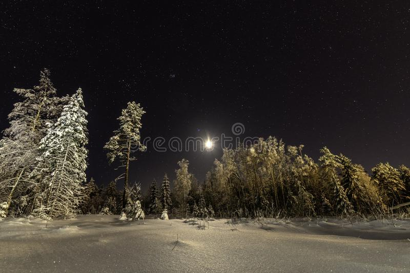 Full moon in clear sky shines over frozen Scandinavian wild forest, long exposure night photo, winter, virgin snowy landscape royalty free stock photography