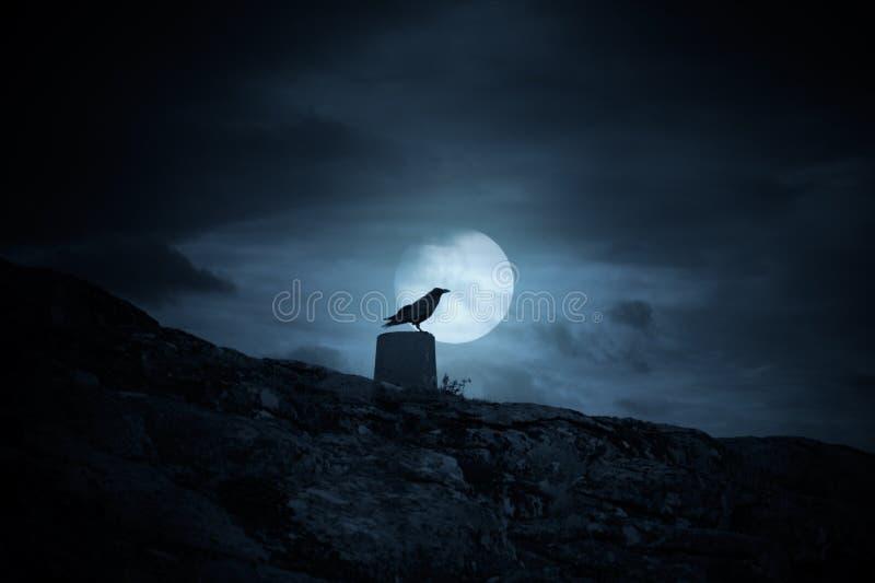 Full moon crow royalty free stock image