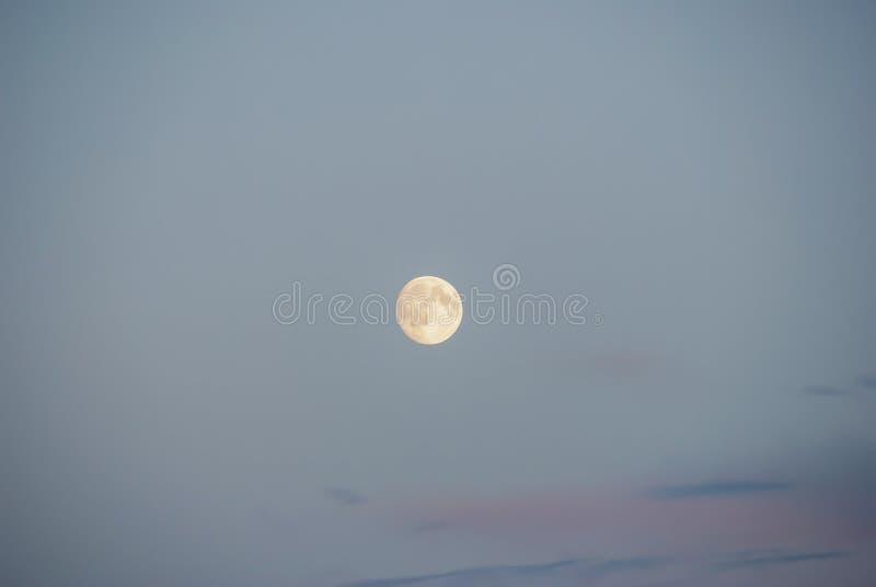 Full Moon Day stock photos