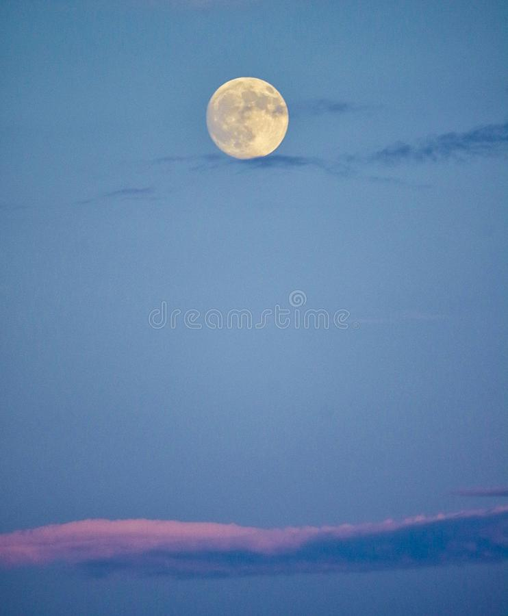 Full moon in early evening sky royalty free stock images