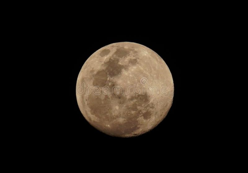 Full moon. Of February 2019 royalty free illustration