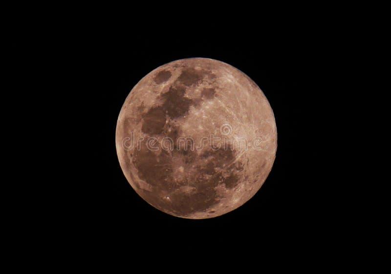 Full moon. Of February 2019 vector illustration