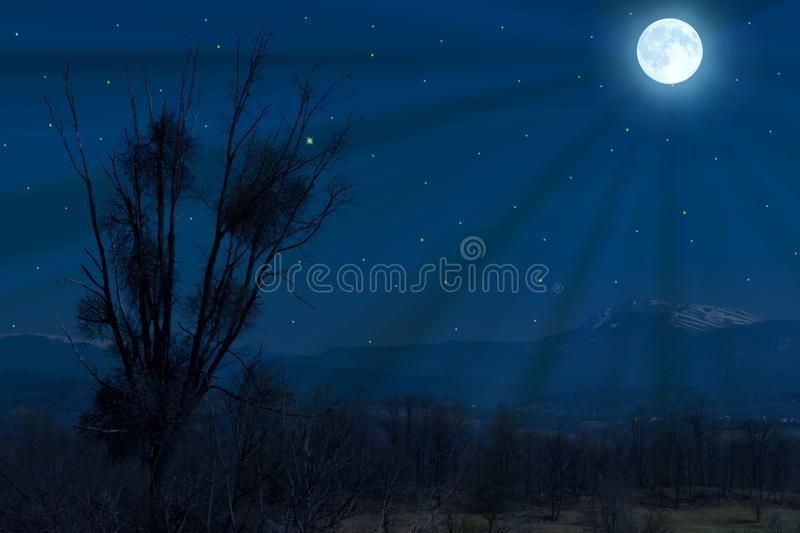 Full moon over the forest and the fields. Tree silhouette in the moonlight stock image