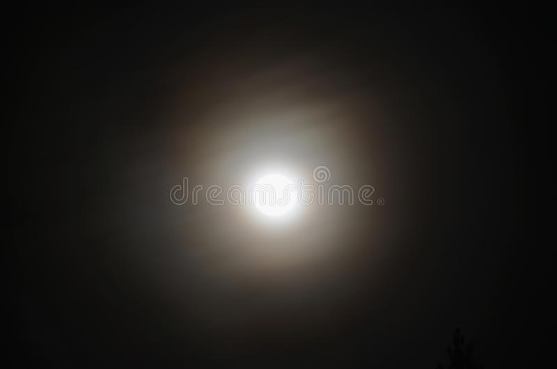 Full moon over the forest, South Bohemia. Czech Republic stock photography