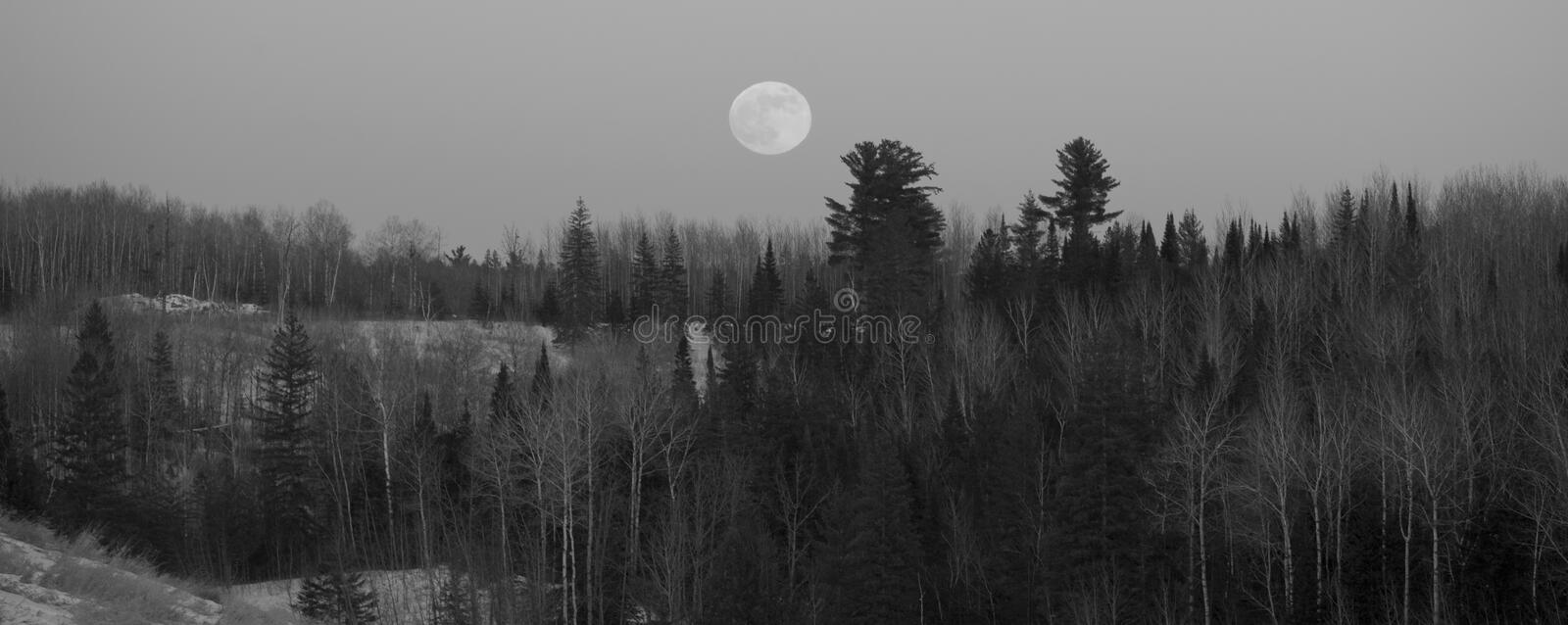 Download Full Moon Over Forested Hills Stock Image - Image: 7835477