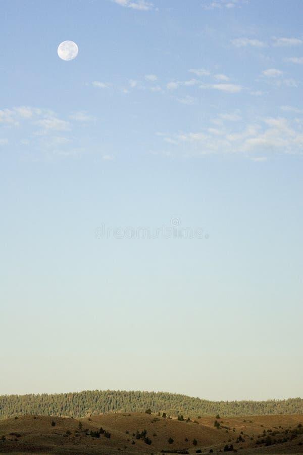 Full moon over horizon stock image