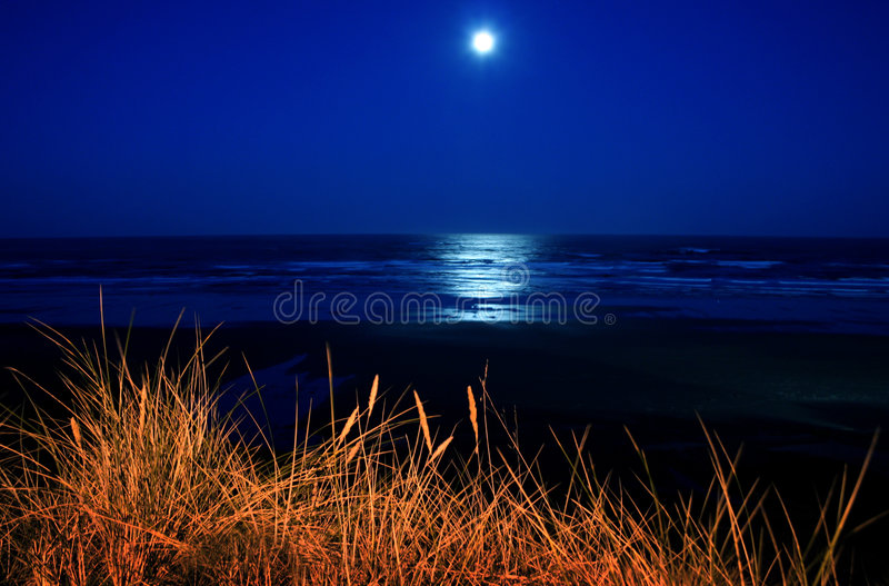 Full moon over Newport beach. Scenic view of full moon over Newport Beach at night with sea grass illuminated in foreground, Oregon; U.S.A royalty free stock photo