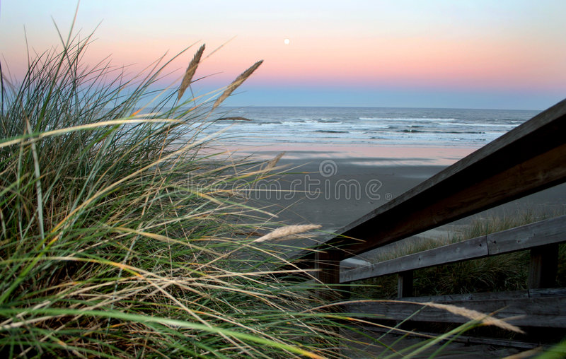Full moon over Newport Beach. Sunrise with a full moon over Newport Beach Oregon with a tall sea grass in the foreground stock images