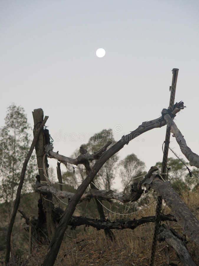 Full moon over rustic fence royalty free stock photography