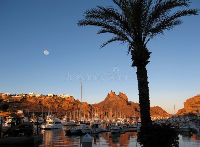 Full Moon Over San Carlos Marina, Mexico. A palm tree frames the marina @ San Carlos Nuevo Guaymas, Mexico on the Gulf of California; Tetakawi Peak rises in the stock photography