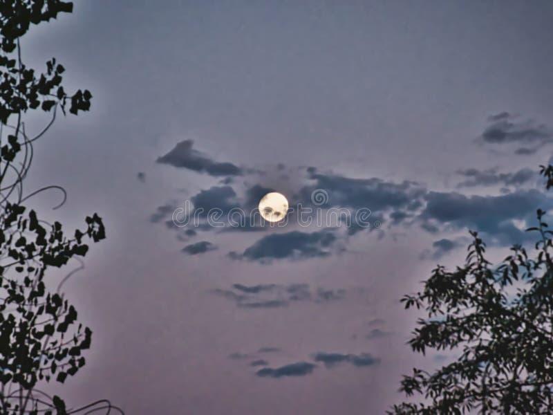 Full Moon precis före gryning royaltyfria bilder